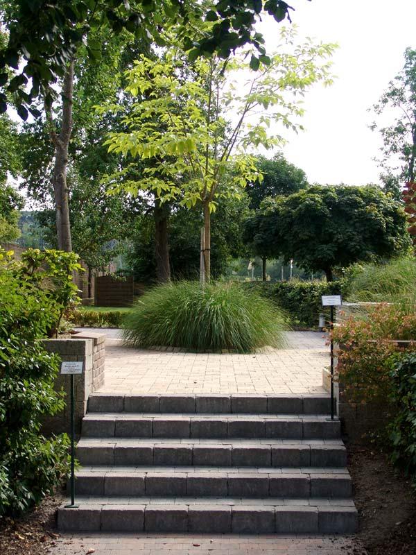 Jardin d cor paysagiste oise entreprises terrassejardin d cor for Decor paysagiste jardin