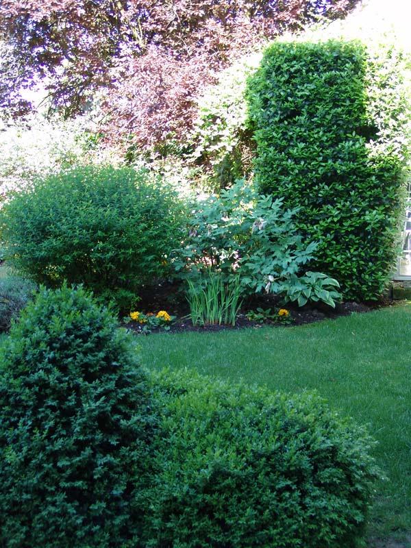 Particuliers jardin d cor paysagiste oise entretien espace for Entretien jardin particulier